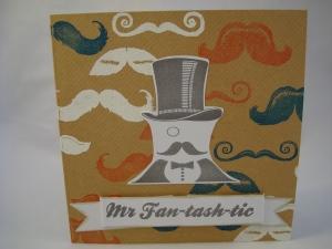 Mr Fan-tash-tic